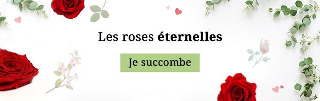Collection de roses éternelles