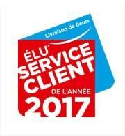 Meilleur service client de l'année 2017