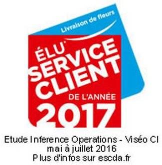 Service Client de l'Année 2017