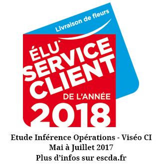 Service Client de l'Année 2018