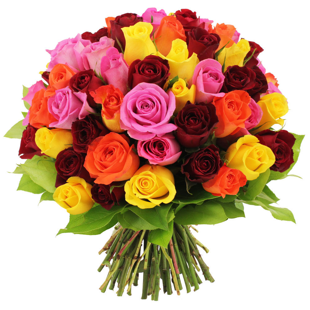 Bouquet 60 roses multicolores livraison express florajet for Bouquet de rose