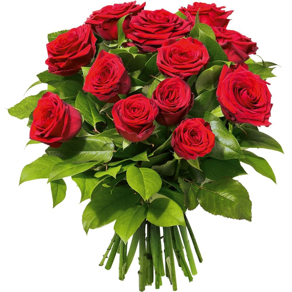 Bouquet de Roses Rouge...