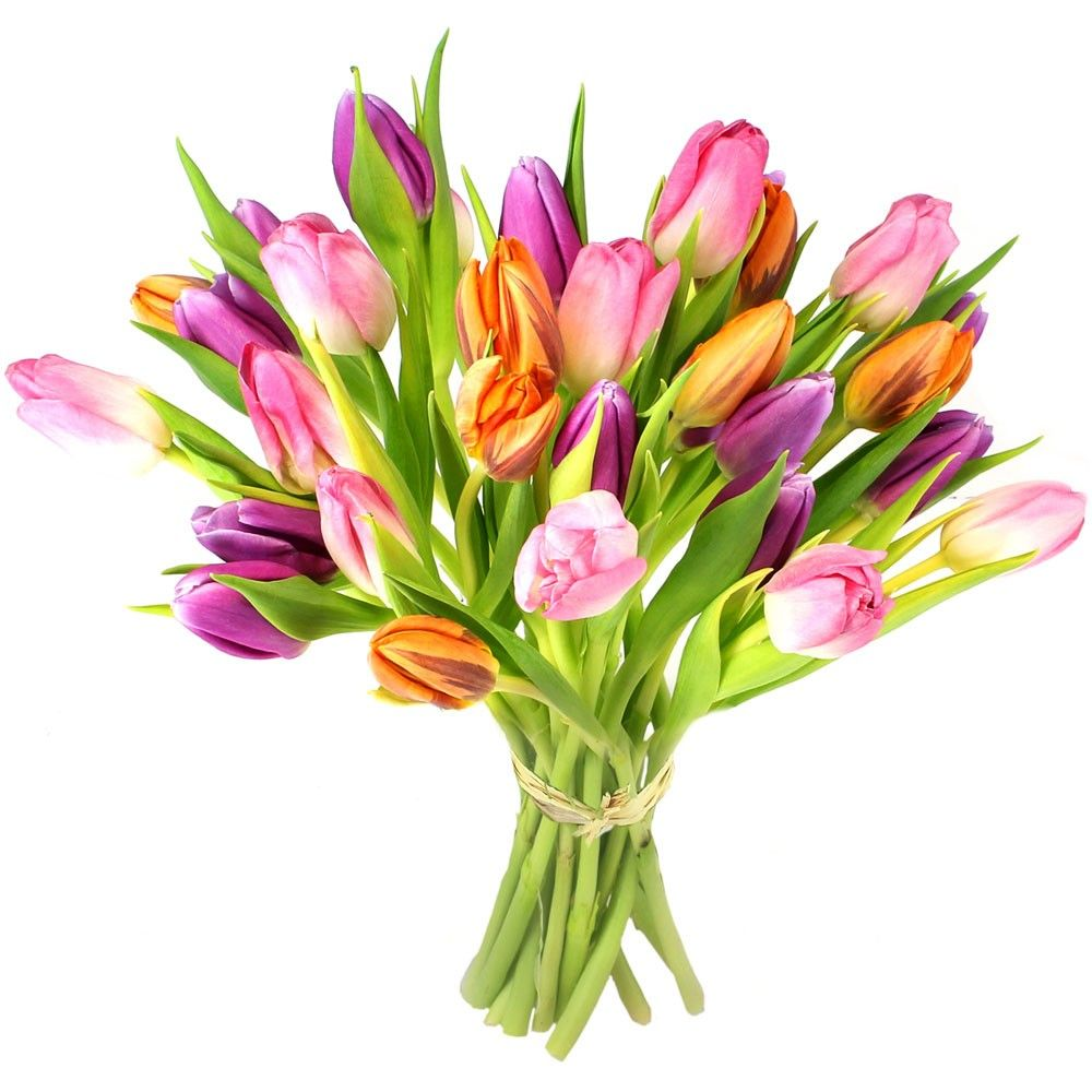 Bouquet de tulipes idylle livraison en express florajet for Bouquet de tulipes