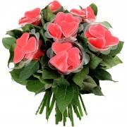 Plantes vertes et fleuries BONBON COEURS ROUGES