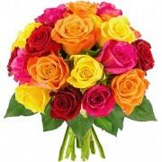Bouquets de fleurs 20 roses multicolores
