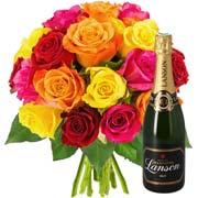 Plantes Vertes et fleuries 20 roses + champagne lanson brut 75cl