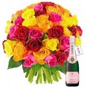 Plantes Vertes et fleuries 50 roses multicolores + champagne 1/2 lanson