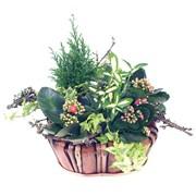 CORBEILLE NATURE - florajet