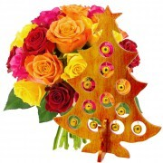 Plantes Vertes et fleuries 20 roses multicolores + sapin rouge et or