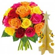 Plantes Vertes et fleuries 20 roses multicolores + sapin or et blanc