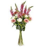 GALARINA - florajet