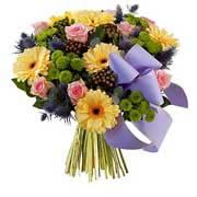 SERENITE - florajet