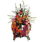 COURONNE FRONTON - florajet