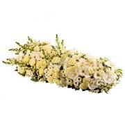 DESSUS CERCUEIL - florajet