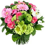 AMBASSADEUR - florajet