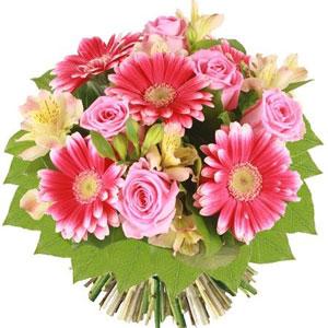 http://www.florajet.com/produits/300/1701.jpg