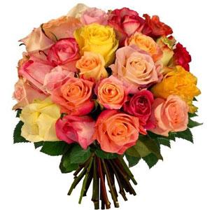 livraison du bouquet de roses 25 equateur variees par florajet livraison france express. Black Bedroom Furniture Sets. Home Design Ideas