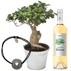 BONSAI GINSENG + VIN BLANC + BRACELET