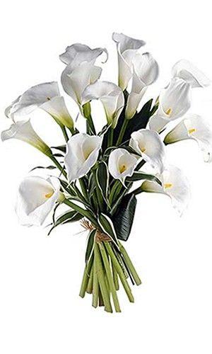 bouquet longues tiges pierrot lunaire - Florajet Mariage