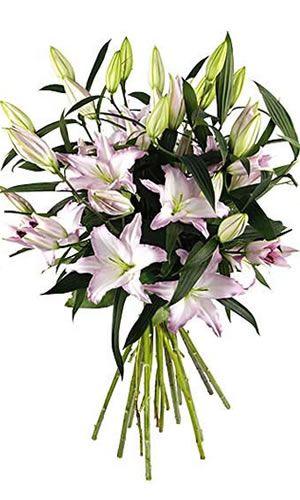 gala - Florajet Mariage