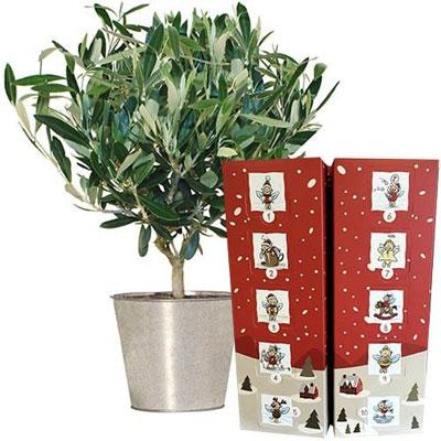 livraison de cadeau gourmand olivier calendrier de l 39 avent par florajet livraison. Black Bedroom Furniture Sets. Home Design Ideas