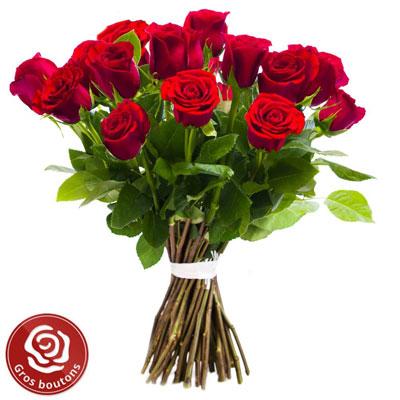 Livraison de fleurs 15 roses rouges gros boutons for Livraison de fleurs demain