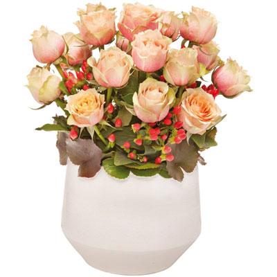 satine - Florajet Mariage