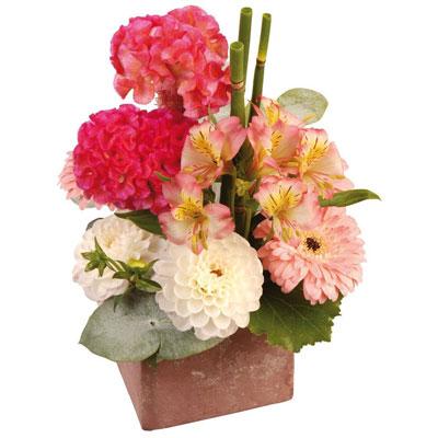 Livraison de la composition florale guipure par florajet for Livraison composition florale