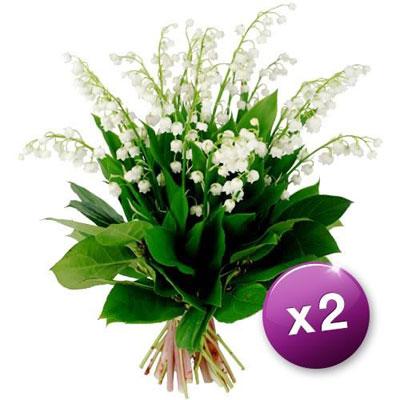 Livraison du bouquet de fleurs duo eve par florajet for Livraison de fleurs demain