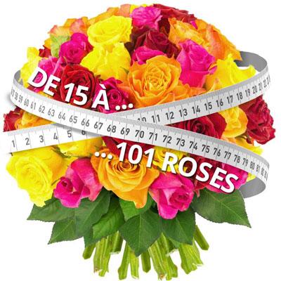15 ROSES MULTICOLORES
