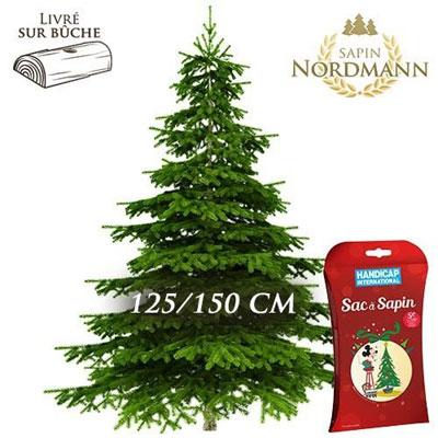 livraison de sapin nordmann sapin nordmann 125 150cm sac a sapin par florajet livraison. Black Bedroom Furniture Sets. Home Design Ideas
