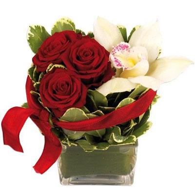 Livraison de fleurs livraison maroc for Livraison fleurs demain