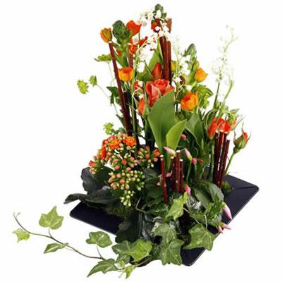 Livraison de la composition florale tamarin par florajet for Livraison composition florale