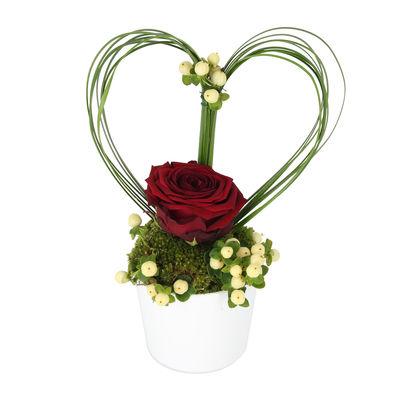Livraison de la composition florale amour griotte par for Livraison composition florale
