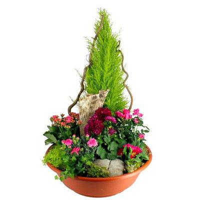 livraison de plante de deuil composition eternite par florajet. Black Bedroom Furniture Sets. Home Design Ideas