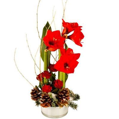 Livraison de la composition florale legende par florajet for Livraison composition florale