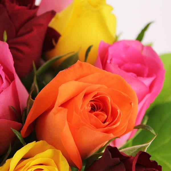 Cadeaux Naissance 20 ROSES MULTI + OURSON BLANC