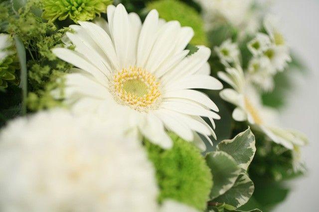 Livraison de fleurs livraison arm nie for Livraison fleurs demain