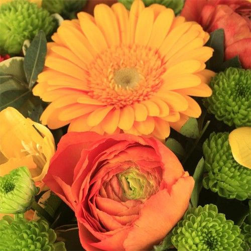 Livraison de fleurs livraison portugal for Fleurs livraison demain