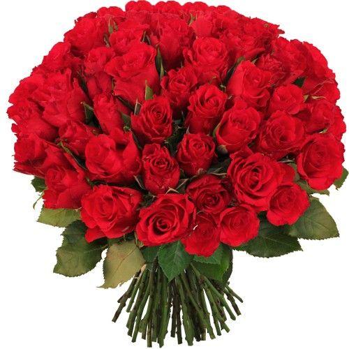 Livraison de fleurs livraison for Livraison fleurs demain