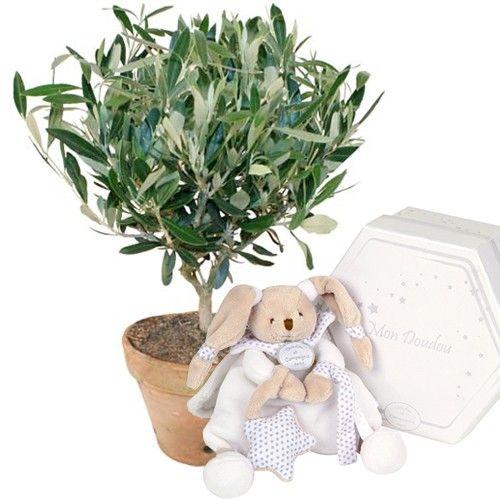 livraison de fleurs olivier lapin celeste livraison france express. Black Bedroom Furniture Sets. Home Design Ideas