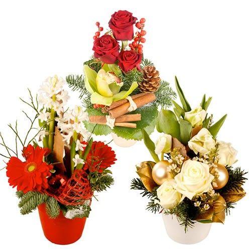 livraison de la composition florale trio festif par florajet. Black Bedroom Furniture Sets. Home Design Ideas