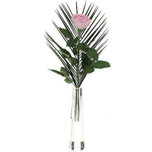 Livraison de fleurs livraison france for Livraison fleurs demain