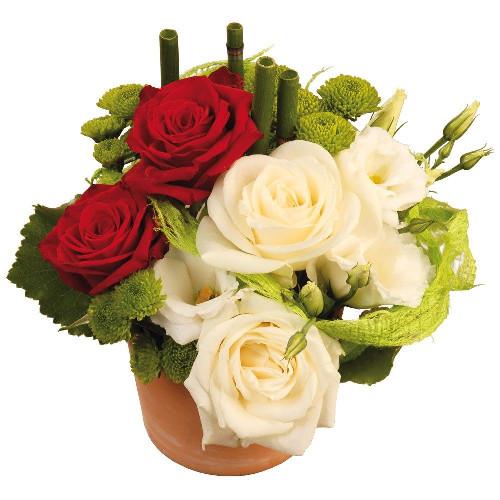Livraison de fleurs livraison france r seau r duit for Livraison de fleurs demain