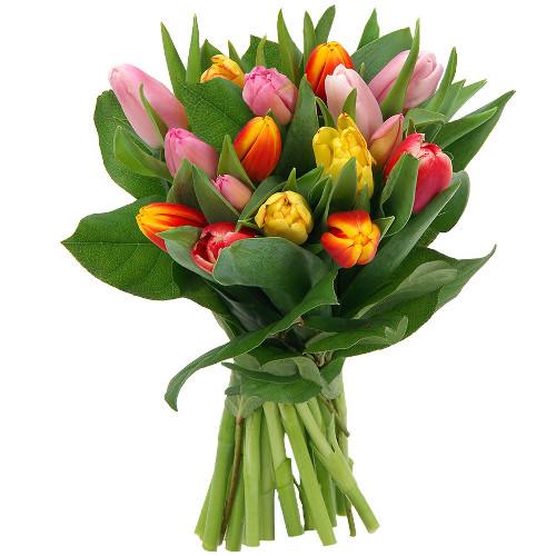 Livraison du bouquet de fleurs anniversaire 15 tulipes for Livraison tulipes