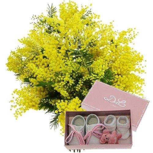 livraison de fleurs 3 bottes mimosa coffret naissance rose livraison france express. Black Bedroom Furniture Sets. Home Design Ideas