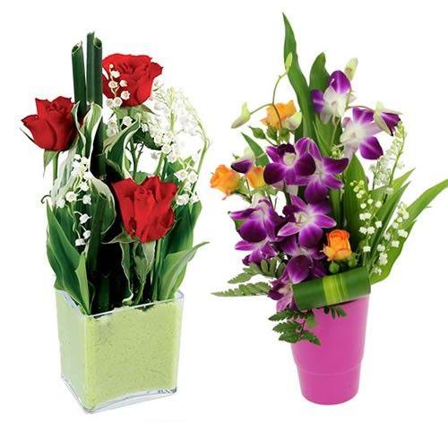 Livraison de la composition florale duo premier mai par for Livraison composition florale