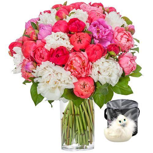 livraison de fleurs 40 pivoines canard livraison france express. Black Bedroom Furniture Sets. Home Design Ideas
