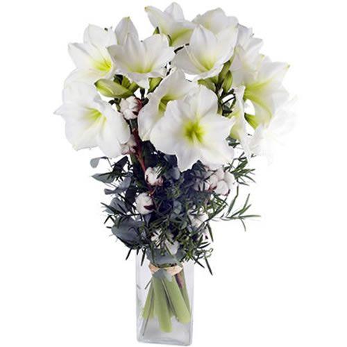 Livraison du bouquet de fleurs jardin d hiver par florajet for Jardin deluxe fleurs