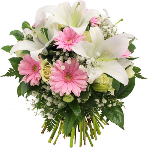 http://florajet.com/produits/zoom/345.jpg